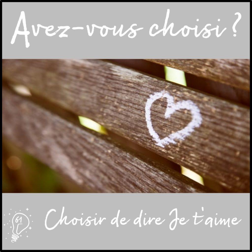 Avez-vous choisi ? Choisir de dire Je t'aime (épisode 61)